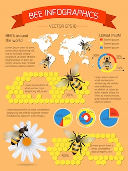 Infografik über bienen