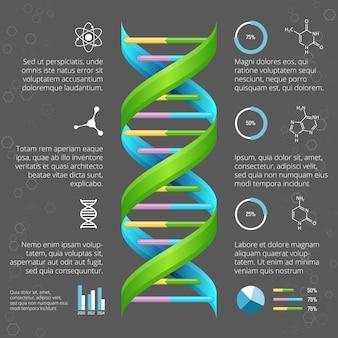Infografik-vorlage mit dna-struktur für die medizinische und biologische forschung. genetische gesundheit, lebensentwicklung, modelllinienhelix