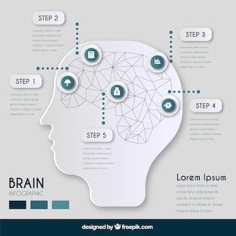 Infografik-vorlage von geometrischen gehirn mit fünf schritten
