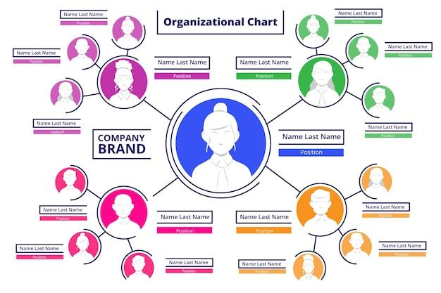 Infografik zum flachen organigramm