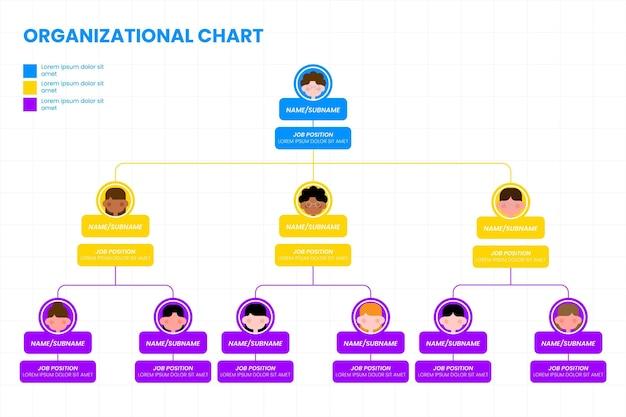Infografik zum organigramm