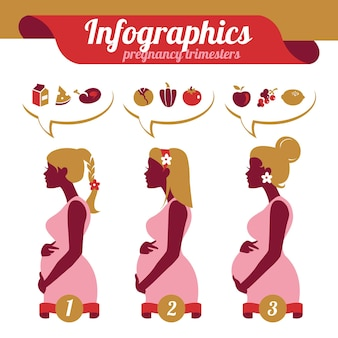 Infografiken von schwangerschaftstrimenonen. silhouetten von schwangeren frauen und lebensmitteln