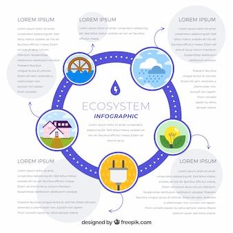 Infographic konzept des ökosystems