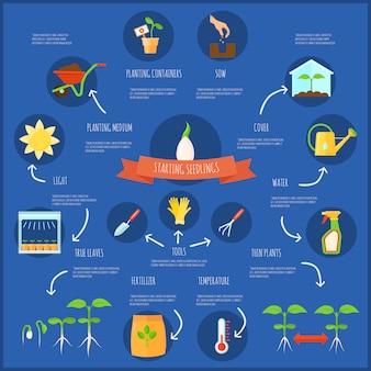 Infographic satz des sämlings mit flacher vektorillustration der bewässerungs- und temperatursymbole