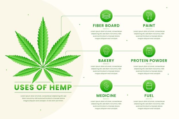 Informationen über hanf verwenden infografik