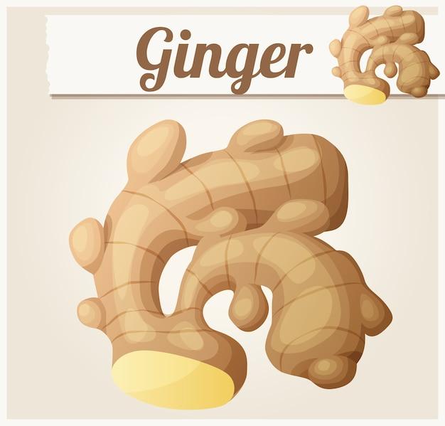 Ingwer-cartoon-ikone