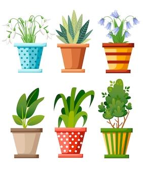Innen- und außenlandschaft garten topfpflanzen. satz der grünen pflanze im topf, illustration der blumentopfblüte. illustration auf weißem hintergrund