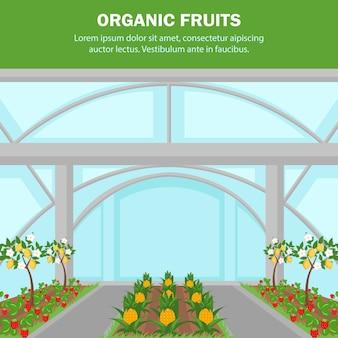 Innenanbau-plakat-schablone der organischen früchte