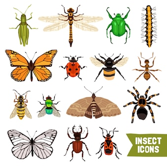 Insekten icons set