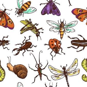 Insekten skizzieren nahtlose musterfarbe