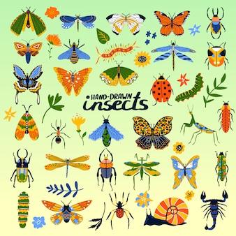 Insektensammlung von käfern, biene, marienkäfer, schmetterling und käferkarikaturplakat für insektologieillustration.