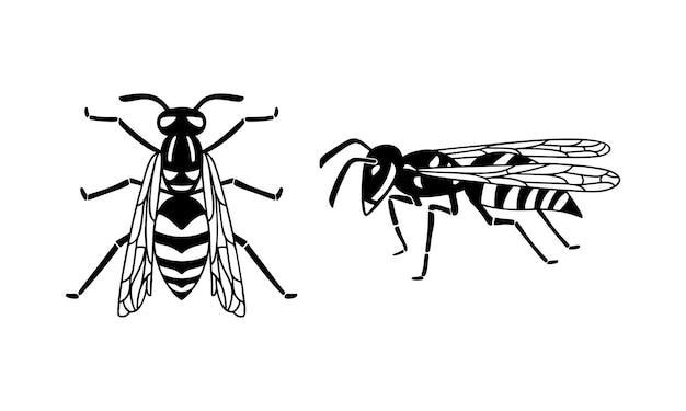 Insektenwespenset, schwarze wespensilhouette. ein stechendes insekt, ein insektenschädling. flaches design die ansicht von oben und von der seite. vektor-illustration isoliert auf weißem hintergrund.