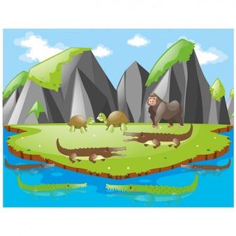 Insel hintergrund-design