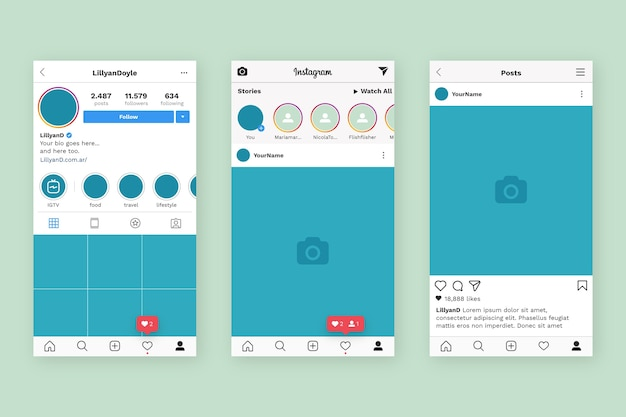 Instagram profil interface vorlage