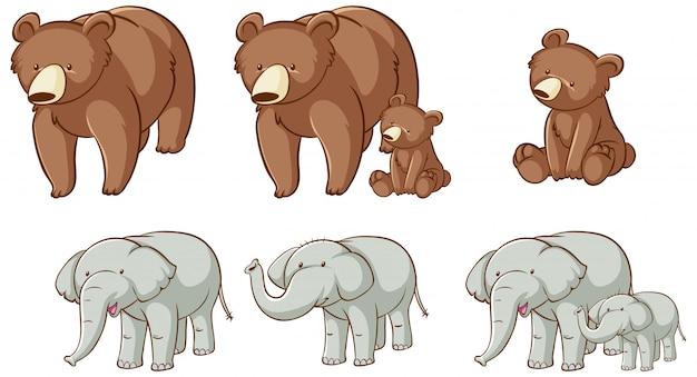 Isolierte bären und elefanten