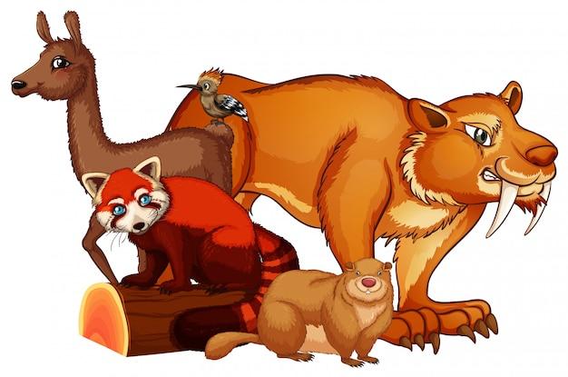 Isolierte bild vieler tiere