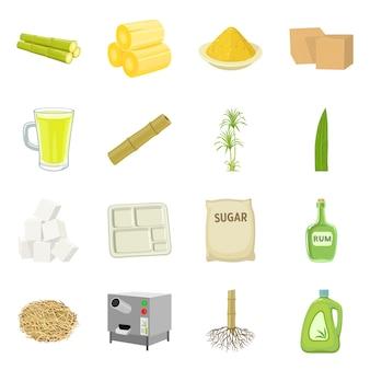 Isolierte gegenstand von zuckerrohr und pflanze zeichen. sammlung des zuckerrohrs und der organischen vektorillustration auf lager.