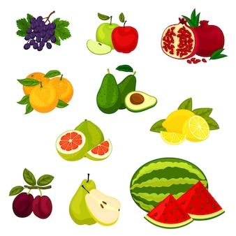 Isolierte vektorfrischfruchttraube, apfel, granatapfel, orange, avocado, zitronenpampelmuse zitronenpflaumenbirne wassermelone