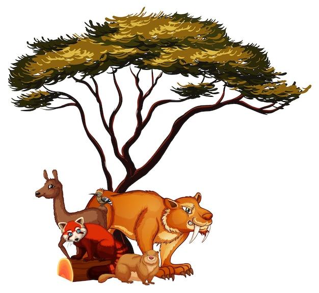 Isoliertes bild von vielen tieren