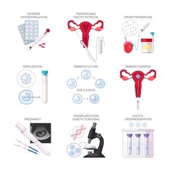 Isoliertes flaches in-vitro-fertilisations-ivf-symbol mit befruchtung während der schwangerschaft, embryokulturtransfer und anderen beschreibungen