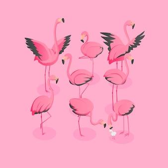 Isometrische ansicht der menge der flamingos