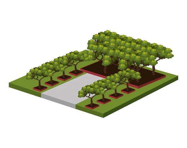 Isometrische bäume
