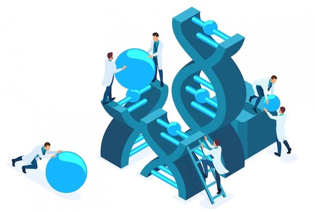 Isometrische gentechnik, dna-struktur, medizinisches personal, wissenschaftler.