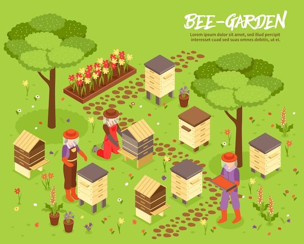 Isometrische illustration des beegarden-bienen-yard