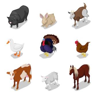 Isometrische nutztiere mit kuh, kaninchen, pferd und gans. flache illustration des vektors 3d