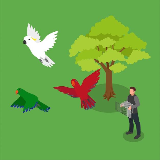 Isometrische vogelfreigabe