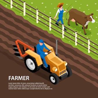Isometrische zusammensetzung der täglichen arbeit des landwirts mit traktor, der boden pflügt und viehkuh zum weiden bringt