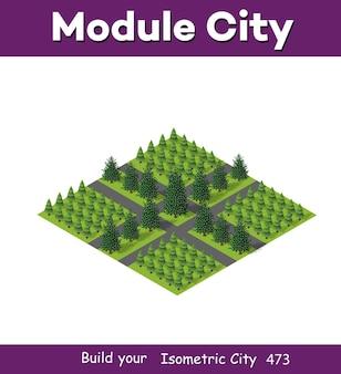 Isometrischer 3d park mit einem grünen baum der sommernaturwaldlandschaft, flache stadtstraße im freien von isolierten objekten. natürliche elemente der vektorillustration für design- und konzeptszene.