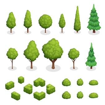 Isometrischer satz parkanlagen mit grünen bäumen und büschen von verschiedenen formen lokalisierte vektorillustration