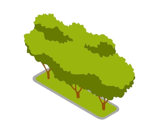 Isometrisches 3d-vektorparkelement. gartenbaum oder busch. grüne umgebungslandschaftsdesignillustration. isolierte ikone des naturelements.