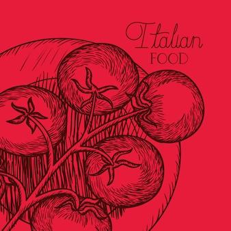 Italienisches lebensmittel der tomatenpflanze gezeichnet