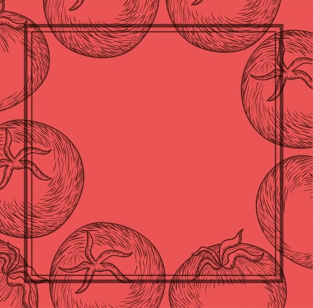 Italienisches lebensmittel der tomatenpflanze gezeichneter rahmen