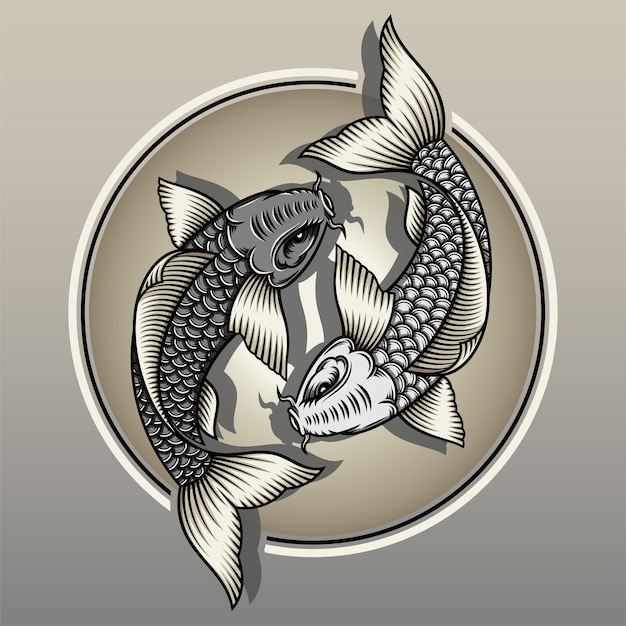 Japanischer koi-fisch