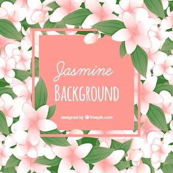 Jasmin und hinterlässt den hintergrund