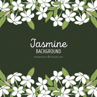Jasmine frame hintergrund
