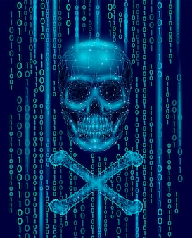 Jolly roger schädel binärcode-nummern, hacker piraterie computer online-angriffswarnung,