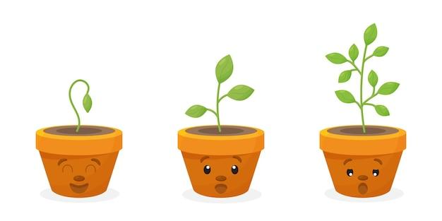 Junge grüne babypflanzen, die in keimungssequenz auf einem plastiktopf mit fruchtbarem boden wachsen