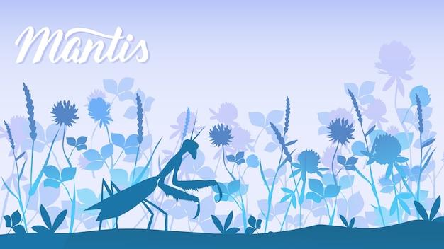 Käfergottesanbeterin unter dem grashintergrund. leben der insekten in der wilden illustration.