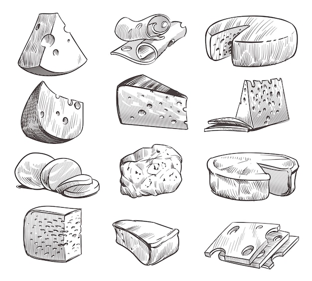 Käse skizzieren. verschiedene käsesorten. frischer cheddar, feta und parmesan milch snack.