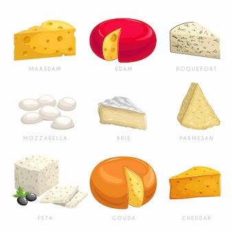 Käse verschiedene arten. maasdam, edamer, roquefort, mozzarella, brie, parmesan, feta, gouda, cheddar.