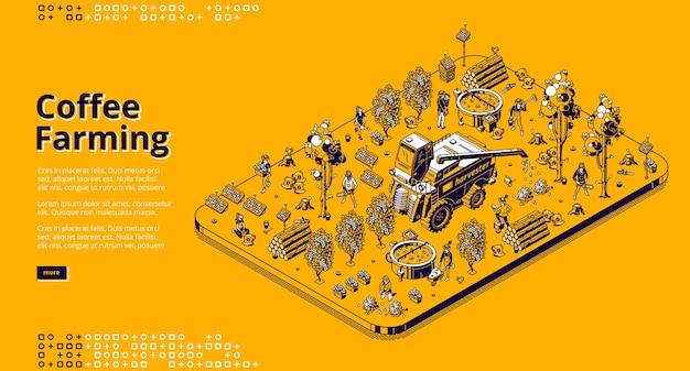 Kaffeeanbau banner. öko-technologien für die ernte von kaffeebohnen auf plantagen. isometrische darstellung des modernen feldes mit sonnenkollektoren, mähdrescher, bäumen und arbeitern