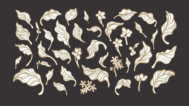 Kaffeeelemente setzten naturzweig, blätter, bohne, blume. kunstlinienillustration