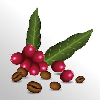 Kaffeepausenplakat mit samen und blattvektorillustrationsentwurf