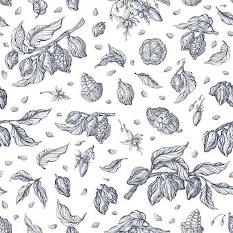 Kakao nahtloses muster. skizzieren. hand gezeichneter baum, bohne, blume. kunst vintage illustration