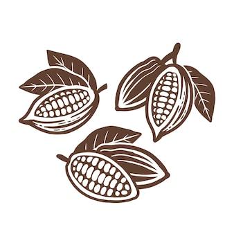 Kakaobohnen-symbol. satz von vektorzeichnungen.