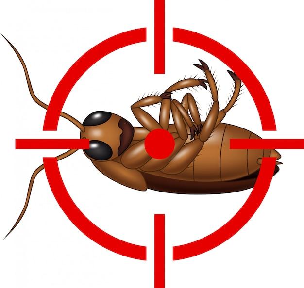 Kakerlake auf ziel icon